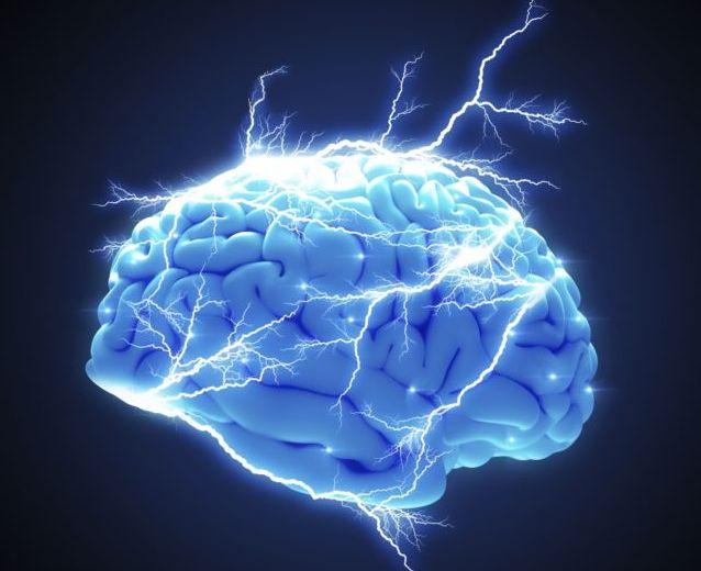 Ανακαλύφθηκε άγνωστη έως τώρα περιοχή του ανθρώπινου εγκεφάλου | tovima.gr