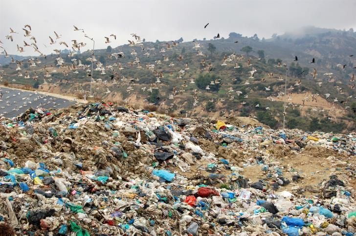 105 εκατ. ευρώ έχει πληρώσει σε χρηματικές ποινές για τα σκουπίδια η Ελλάδα | tovima.gr