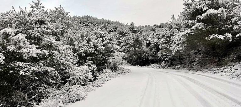 Ζάκυνθος: Κλειστοί οι δρόμοι από το χιόνι και τον πάγο | tovima.gr