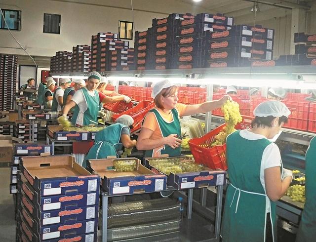 Στην κορυφή τα αγροτικά προϊόντα | tovima.gr