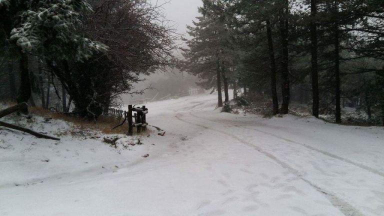 Κλειστός ο δρόμος προς Πάρνηθα λόγω χιονόπτωσης | tovima.gr