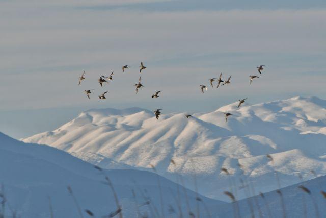 Με πτώση της θερμοκρασίας και χιονοπτώσεις έρχεται η «Ωκεανίδα» | tovima.gr