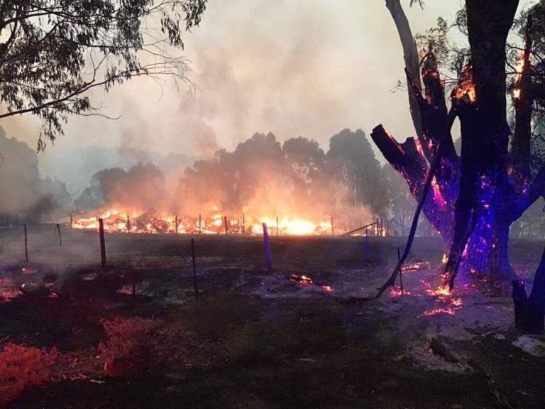 Αυστραλία: Δεκάδες δασικές πυρκαγιές λόγω ισχυρού  καύσωνα | tovima.gr