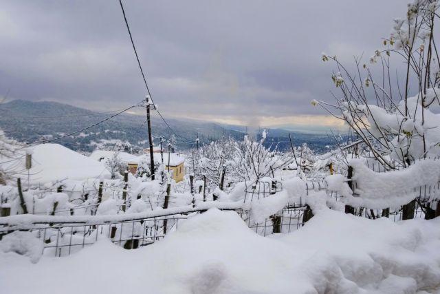 Καιρός: Πού χιονίζει στην Ελλάδα | tovima.gr