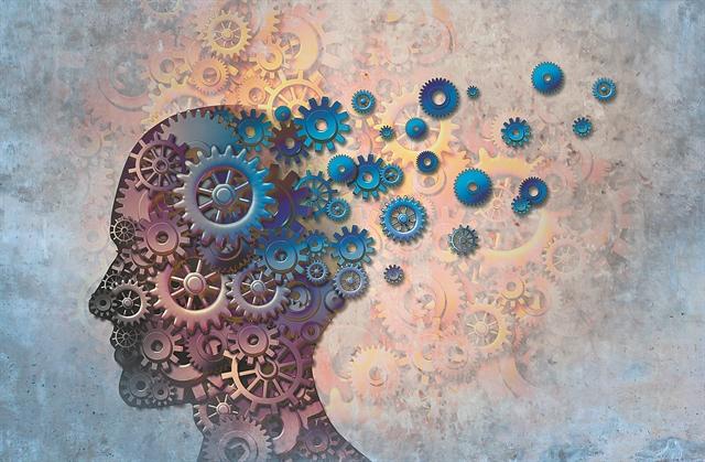 Ως τα βαθιά γεράματα ο εγκέφαλος «γεννά» νευρώνες | tovima.gr
