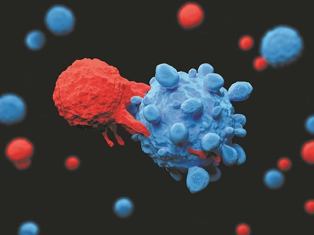 Ελπίδες για τη θεραπεία των αιματολογικών καρκίνων | tovima.gr
