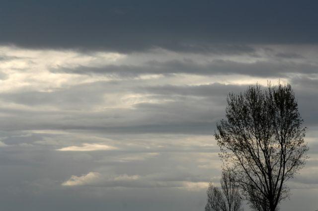 Βροχές, καταιγίδες και σκόνη τα χαρακτηριστικά του καιρού | tovima.gr