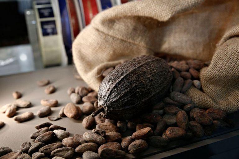 Αλαλούμ με τον ΦΠΑ: Κακάο στο 13% στο σουπερμάρκετ, στην καφετέρια 24% | tovima.gr