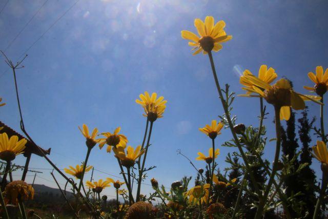 Μύρισε καλοκαίρι – Έως τους 27 βαθμούς η θερμοκρασία | tovima.gr
