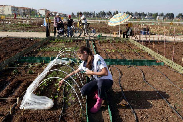 448,6 εκατ. ευρώ για 32 νέα αρδευτικά έργα – Ενισχύονται οι βιολογικές καλλιέργειες   tovima.gr