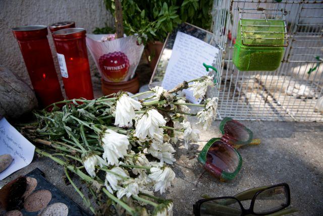 Ντροπή: Εκτός επιχειρησιακού σχεδίου της Πυροσβεστικής το Μάτι, παρά τους 102 νεκρούς πέρυσι | tovima.gr