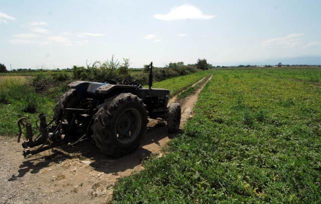Βιολογική γεωργία: Εγκρίθηκαν  6.330 οι αιτήσεις | tovima.gr