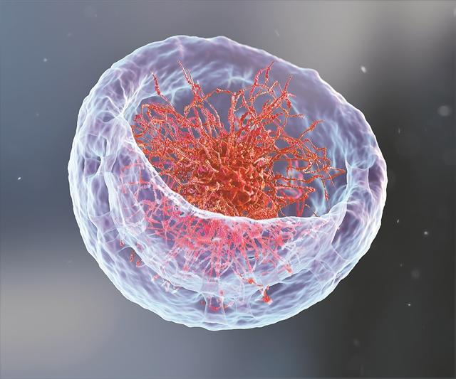 «Κατάδυση» στο γονιδίωμα | tovima.gr