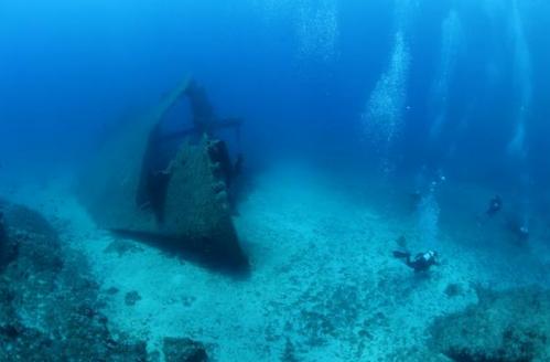 Οι σοβαρές επιπτώσεις του CO2 στα θαλάσσια ζώα | tovima.gr