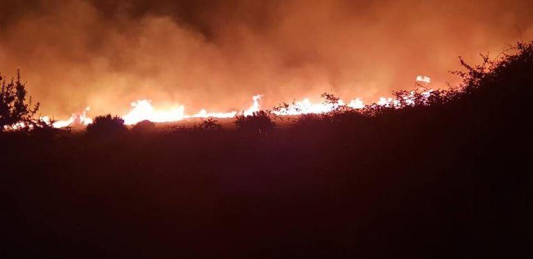 Εκκενώθηκαν σπίτια στην Κάρυστο – Ολονύχτια μάχη με τις φλόγες (φωτό) | tovima.gr