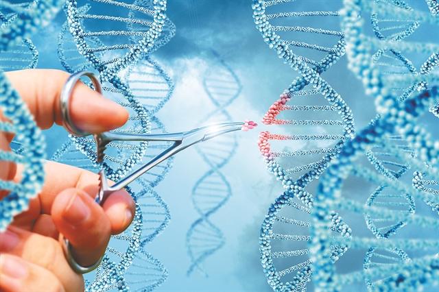 Υλοποίηση της υπόσχεσης για κυτταρική και γονιδιακή θεραπεία των ασθενών | tovima.gr