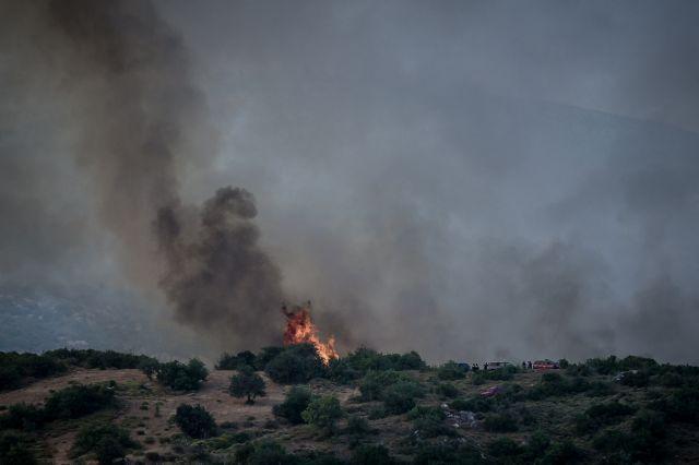 Φθιώτιδα – Δίβρη: Μέσα από τα σπίτια πέρασαν οι φλόγες | tovima.gr