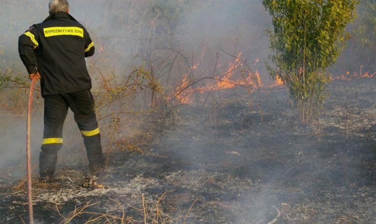Υπό έλεγχο οι φωτιές σε Μαραθώνα και Ασπρόπυργο | tovima.gr