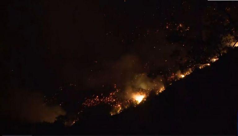 Υπό έλεγχο η φωτιά στην Ανατολική Μάνη | tovima.gr
