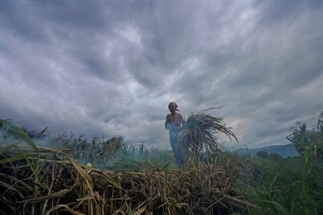 Η κλιματική αλλαγή και η «εκδίκηση» του πλανήτη | tovima.gr