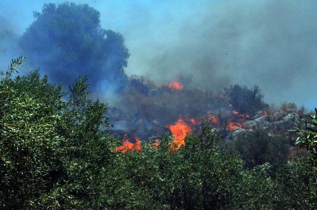 Σε ύφεση η πυρκαγιά στον Κιθαιρώνα   tovima.gr