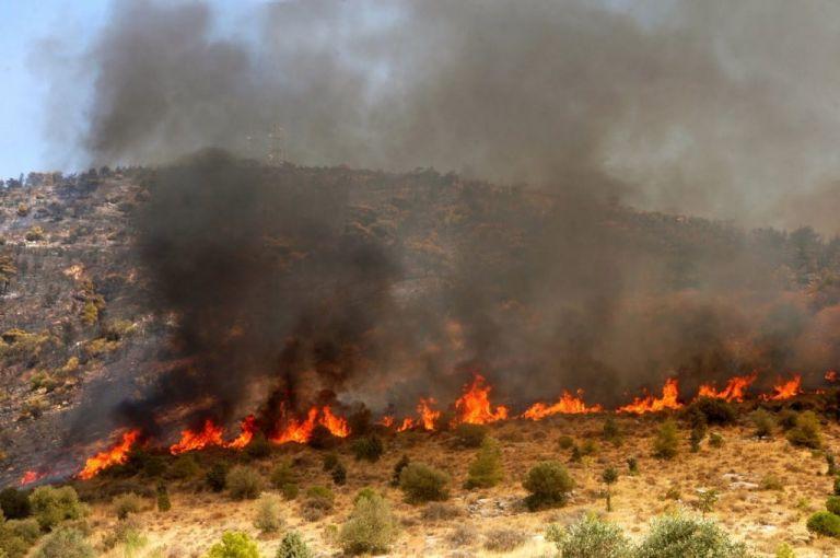Εσβησε τα ξημερώματα η φωτιά στο Ζαρό | tovima.gr