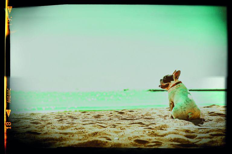Καλοκαίρι για πάντα | tovima.gr
