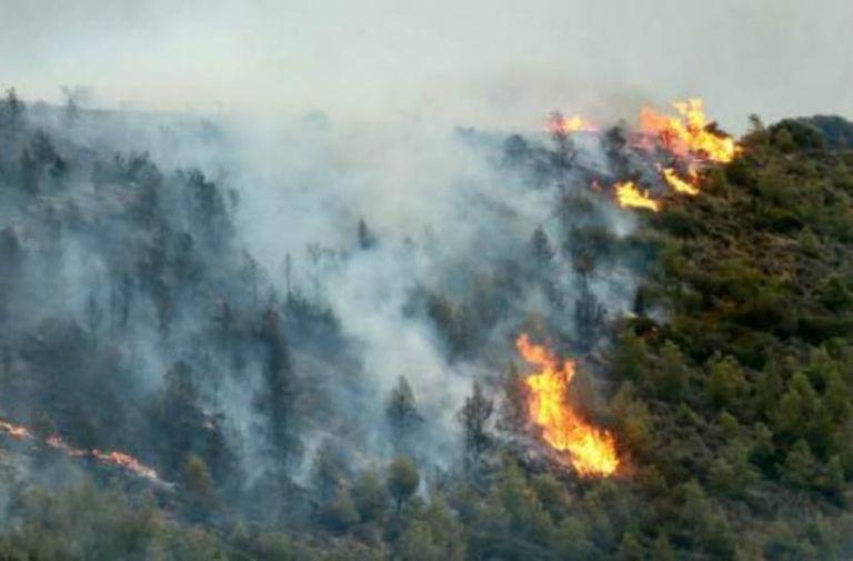 Σε εξέλιξη η πυρκαγιά στην Αρχαία Ολυμπία- Στάχτη 3 στρέμματα δάσους | tovima.gr
