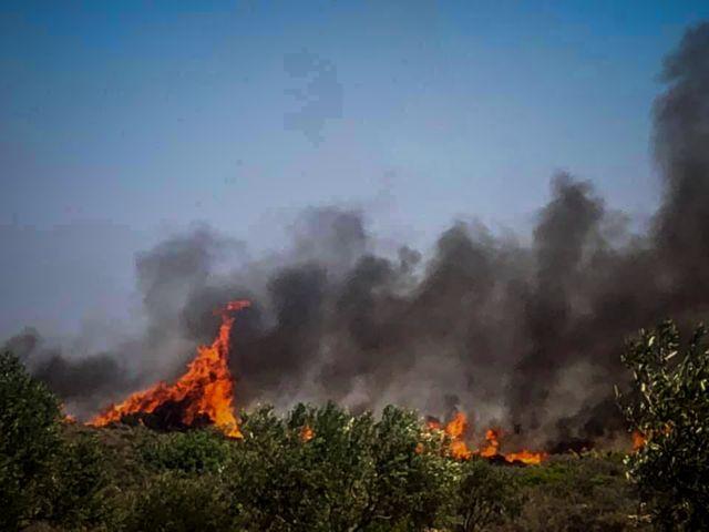 Ελαφόνησος: Το νησί φλέγεται – το εγκαταλείπουν οι παραθεριστές | tovima.gr