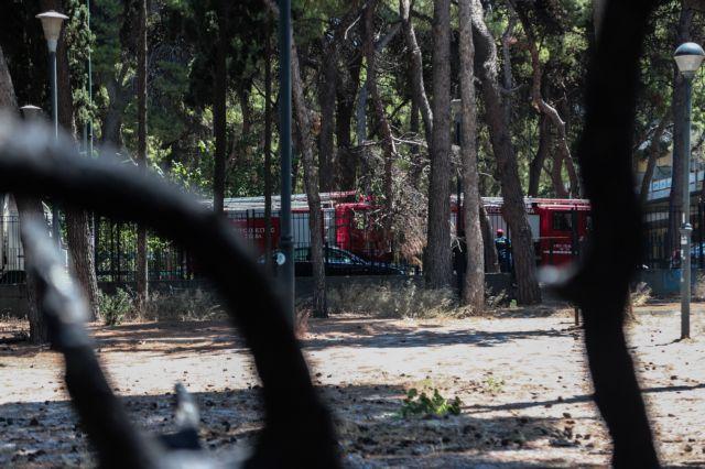 Υμηττός – πυρκαγιά: Πού οφείλονται οι γρήγορες αντιδράσεις της Πυροσβεστικής | tovima.gr