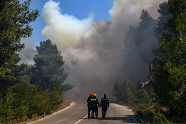 Δήμαρχος Διρφύων – Μεσσαπίων στο One Channel: Δεν ξέρουμε πώς θα εξελιχθεί η φωτιά | tovima.gr