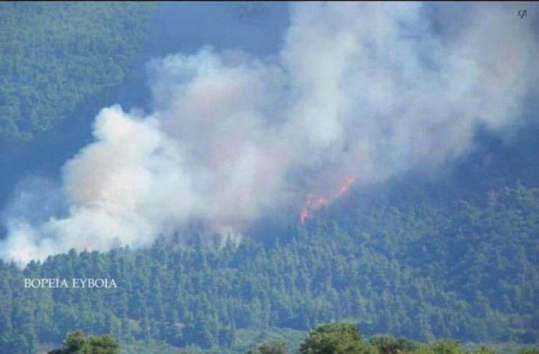Eκπρόσωπος Πυροσβεστικής στο One Channel: Δημιουργείται αντιπυρικό ανάχωμα λίγο πριν τα Ψαχνά | tovima.gr