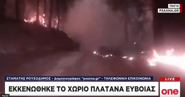 One Channel: Συγκλονίζουν τα πλάνα από τις φλόγες που κατακαίουν δάσος   tovima.gr