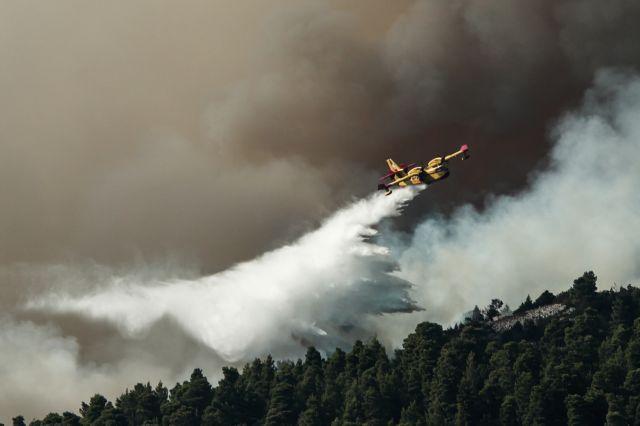 Εύβοια – πυρκαγιά: Δεν έχει τέλος η καταστροφή | tovima.gr
