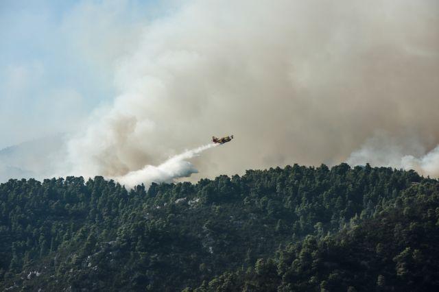 Εύβοια – πυρκαγιά: Εικόνες από το drone της Πυροσβεστικής | tovima.gr