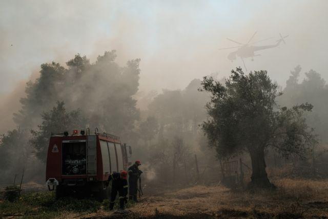 Εύβοια – πυρκαγιά: Κανείς δεν εφησυχάζει – Αντιπυρικές ζώνες κοντά στην Πλατάνα | tovima.gr