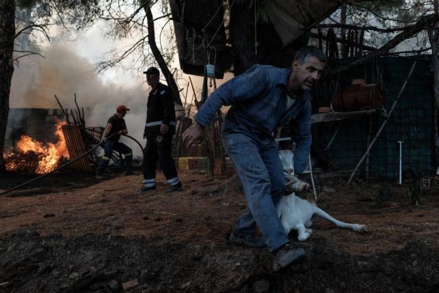 Αντιμέτωποι με την καταστροφή οι κάτοικοι του χωριού Μακρυμάλλη | tovima.gr