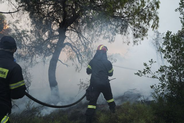 Καθηγητής ατμοσφαιρικής ρύπανσης στο One Channel: Μην εκτίθενται στον καπνό οι ευπαθείς ομάδες | tovima.gr