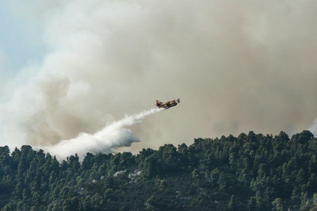 Φωτιά στην Εύβοια: «Μάχη» να περιοριστεί σε χαράδρα κοντά στην Πλατάνα | tovima.gr