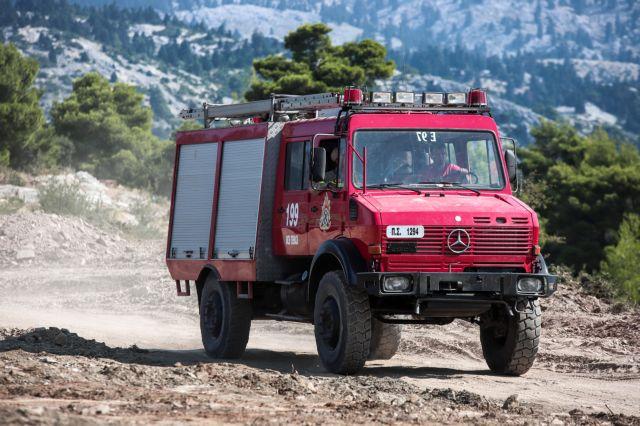 Συμπλοκή πυροσβεστών με φερόμενο εμπρηστή | tovima.gr