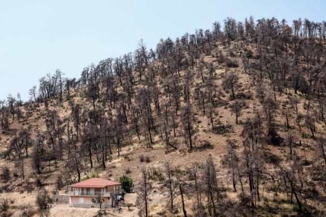 Εύβοια πυρκαγιά: Η επόμενη μέρα και ο φόβος των κατοίκων | tovima.gr