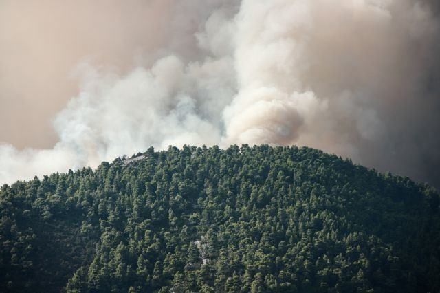 Δήμαρχος Διρφύων στο One Channel: Δεν υπάρχουν τυχαία αίτια για τη φωτιά | tovima.gr