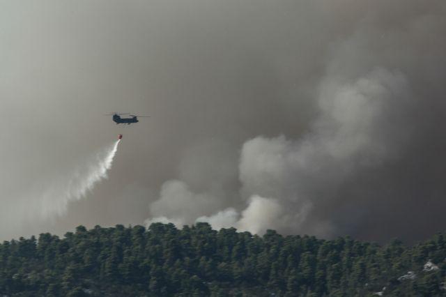Εύβοια – πυρκαγιά: Κάηκαν περισσότερα από 24.000 στρέμματα | tovima.gr