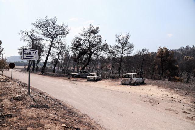 Εύβοια – πυρκαγιά: Τα νέα στοιχεία που υποστηρίζουν το σενάριο εμπρησμού   tovima.gr