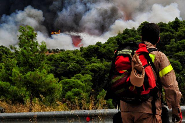 Υπό έλεγχο η φωτιά στις Ερυθρές Μάνδρας | tovima.gr