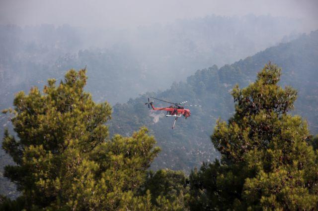 Υπό έλεγχο η φωτιά στη Σαλαμίνα- Εκκενώθηκε προληπτικά οικισμός | tovima.gr