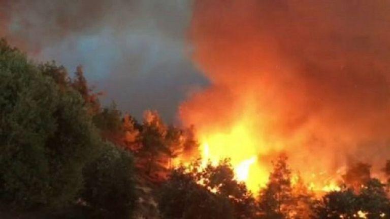 Φωτιά στην Κακή Βίγλα Σαλαμίνας – προληπτική εκκένωση του οικισμού | tovima.gr