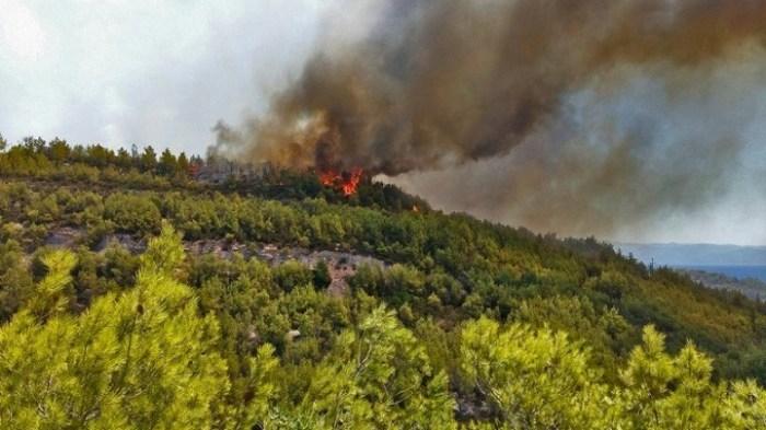 Πυρκαγιά σε δύσβατο σημείο στις Καρυές Σαμοθράκης | tovima.gr