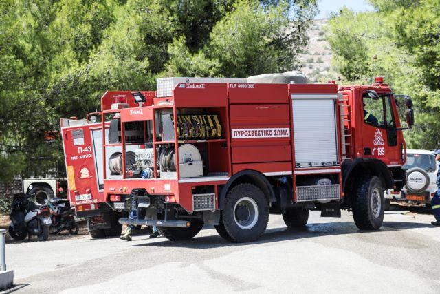 44 δασικές πυρκαγιές το τελευταίο 24ωρο   tovima.gr