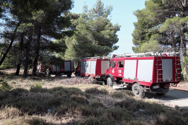 Πυρκαγιά σε δασική έκταση στα Φάρσαλα | tovima.gr